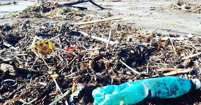 La spiaggia d'inverno (piena di rifiuti e plastica)