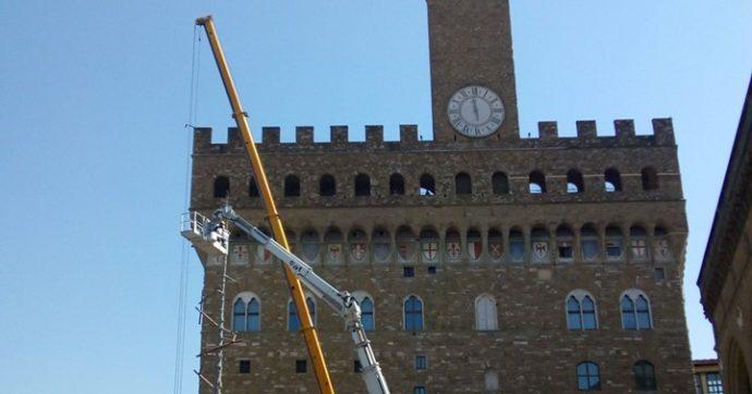 Miracolo a Firenze: da dove spunta quell'albero?
