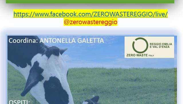 Allevamenti intensivi e benessere animale, un webinar di Legambiente